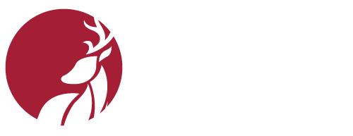 Agence Saint Hubert